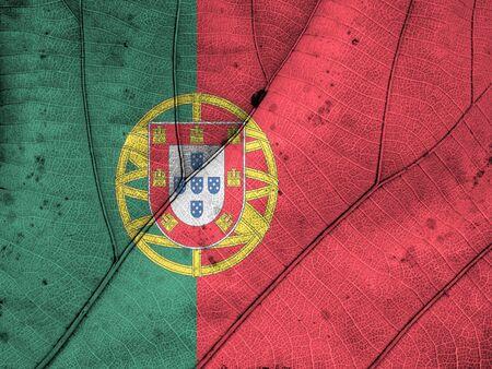 drapeau portugal: Portugal flag leaf texture Banque d'images