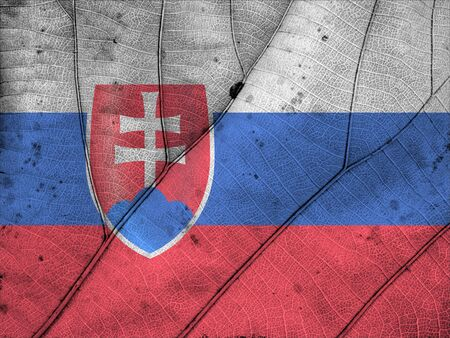 slovakia flag: Slovakia flag leaf texture Stock Photo
