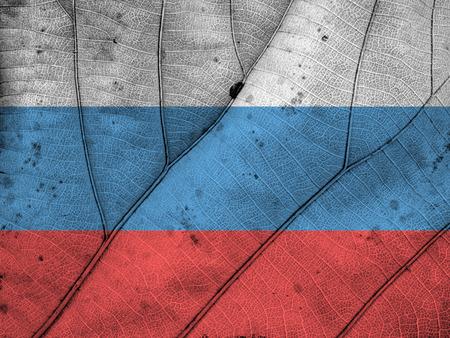 russia flag: Russia flag leaf texture