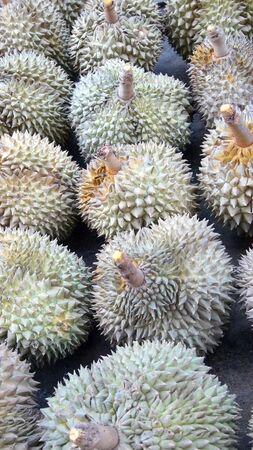 dorian: durian Stock Photo