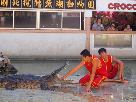 Samutprakarn,Thailand - April 18, 2015 : crocodile show at crocodile farm .This exciting show is very famous among tourist and Thai people