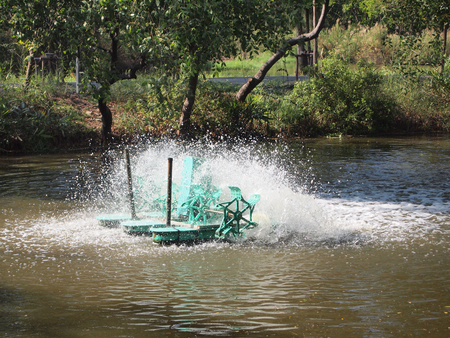 paddle wheel: Paddle Wheel Aerator for oxygen to the water.