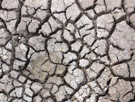 barren: Barren ground horizontal Stock Photo
