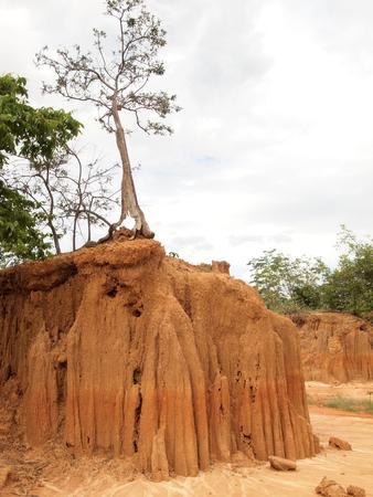 Lalu Park in Sakaeo province, Thailand, due to soil erosion has produced stranges shapes Stock Photo