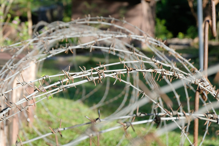 Barbed Wire close up Stock Photo