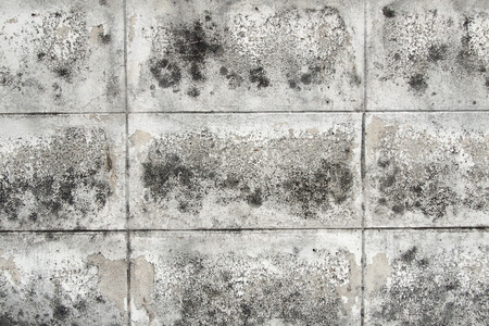 black and white brick wall texture background Stockfoto - 123154138