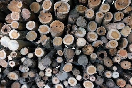 Wall of stacked wood logs