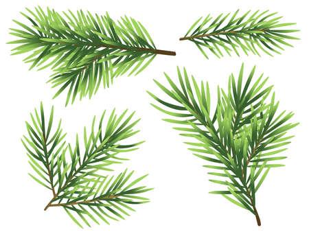 Set christmas tree branch illustration isolated on white background
