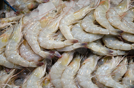 Pacific white shrimp with ice in thai market Banque d'images