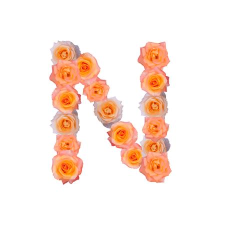 La lettre N, dans l'illustration de roses Alphabet bloom set vieux rose rose couleur isolé sur fond blanc, vecteur eps10