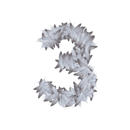 the letter number three or 3, in the alphabet feather from bird