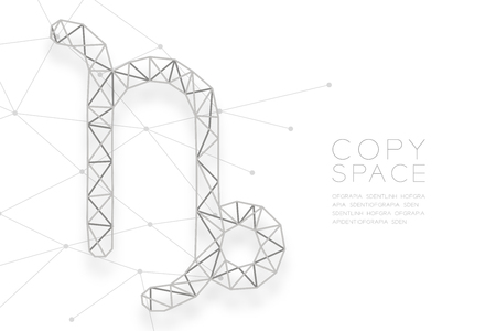 Capricorn Zodiac sign wireframe Polygon silver frame structure, Fortune teller concept design illustration isolated on white background with copy space, vector