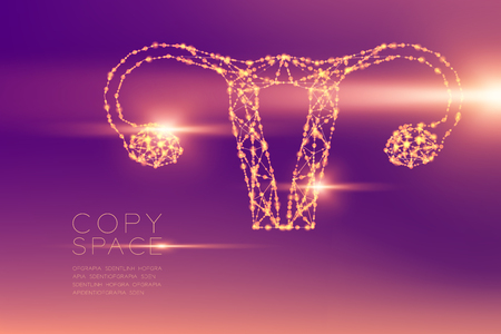 Ovary and uterus shape futuristic pattern wireframe polygon bokeh light structure and lens flare, Medical Science Organ concept illustration isolated on purple gradients background with copy space