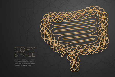 Intestine shape wireframe polygon golden frame structure, Medical Science Organ concept design illustration isolated on black gradient background with copy space, vector eps 10