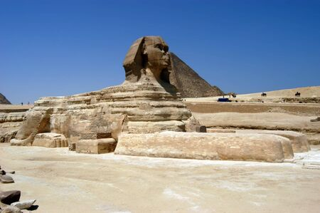 Great sphinx in front of pyramids, Giza, Cairo, Egypt                                 photo
