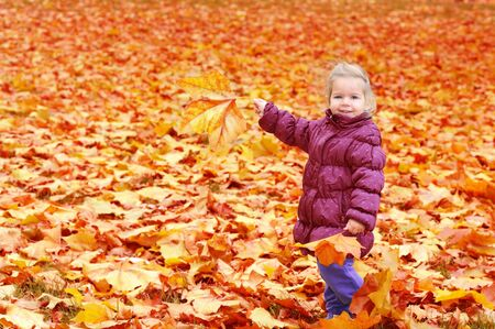 Adorable toddler girl playing with autumn leaves photo