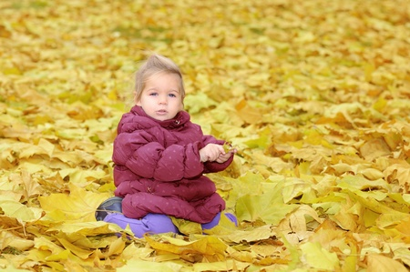 Adorable toddler girl playing with autumn leaves