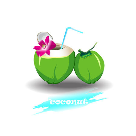 coconut drink: coconut drink sweet fresh vector isolated