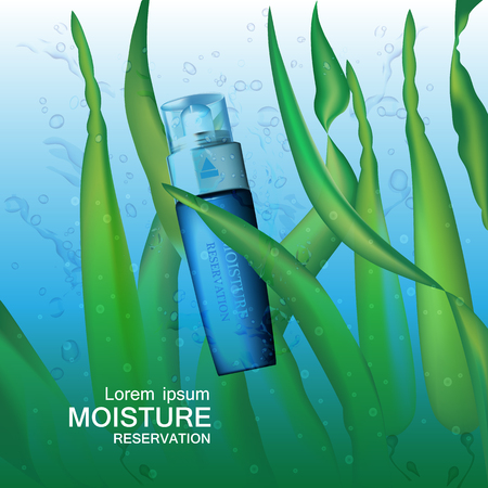 moisture cream reservation, Improves moisture absorption for skin care in the green seaweed