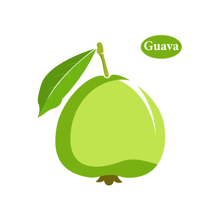 Guava icon in flat style. Isolated object. Vector illustration on white background Illustration