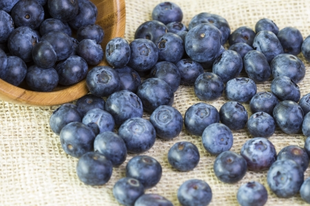 sackcloth: Blueberries