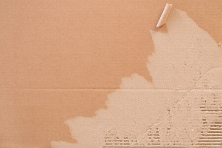 Torn corrugated fiberboard