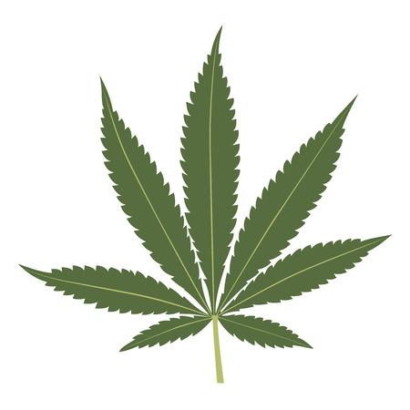 hanf: Cannabis Blatt Vektor-Illustration isoliert auf wei�em Hintergrund Illustration