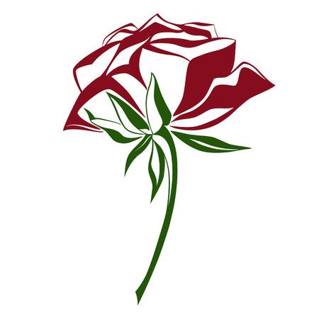 Rose flower sketch, vector illustration