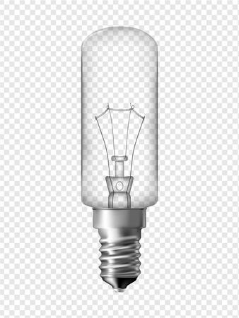 socle: Fridge light bulb, transparent bulb design  Realistic vector illustration