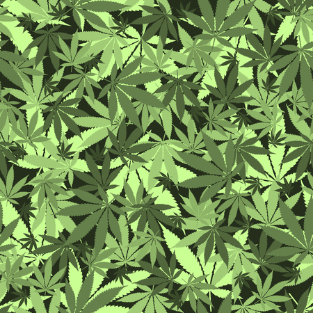 Seamless cannabis leaves pattern. Medical marijuana, legalize culture concept.
