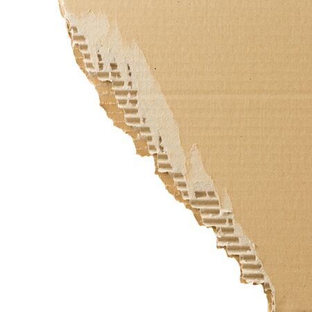 torn cardboard: Torn cardboard sheet isolated on white with place for text. Square format.