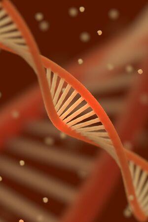 macroshot: DNA chain macroshot.