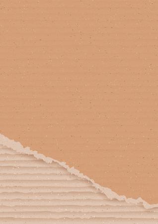 paperboard: Corrugated cardboard background