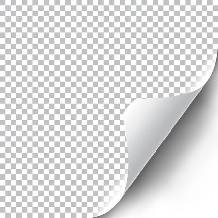 Curly Page Corner realistische Darstellung mit transparentem Schatten. Bereit, auf Ihr Design anzuwenden. Grafikelement für Dokumente, Vorlagen, Poster, Flyer. Vektor-Illustration