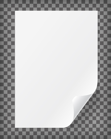 Blank A4 paper sheet with curled corner. Realistic vector illustration