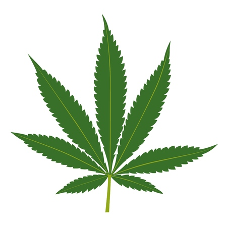 Cannabis leaf isolated on white background. Marijuana silhouette. Vector illustration.