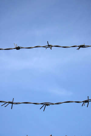 Barbed wire and blue sky Stock Photo - 2947864