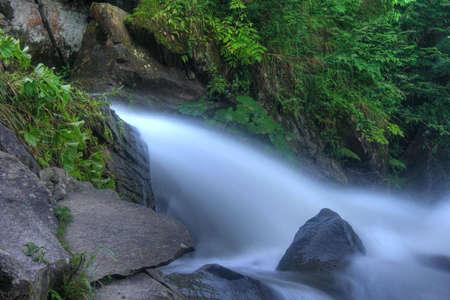 murmur: On a photo mountain river stone with moss. Ukraine