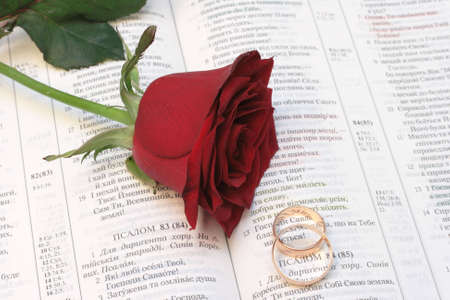 rose with wedding rings and bible on black
