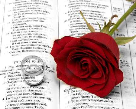 Red rosa and gold wedding ringa on the Bible photo