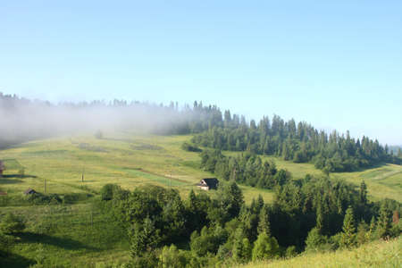 Misty morning in Carpathian Mountains  photo