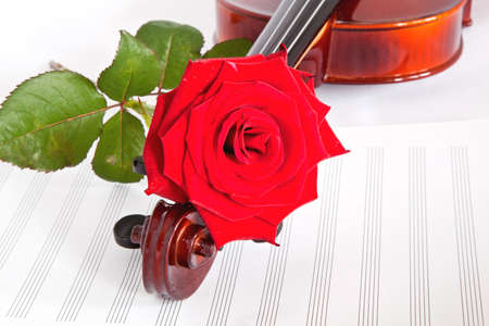 violin with red  flower and musical notebook on a white background photo