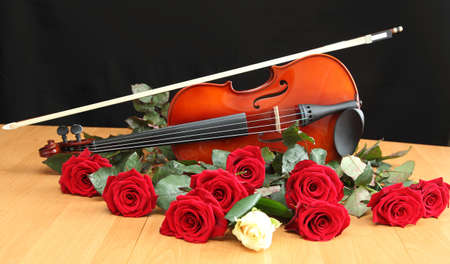 violin and roses on black background photo