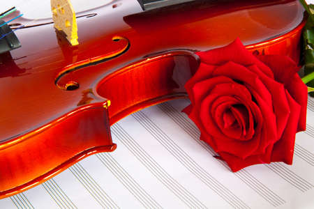 violin and musical notebook  photo