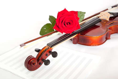 Viola with red roses on notes sheet photo