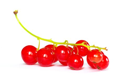 bacca: red currant