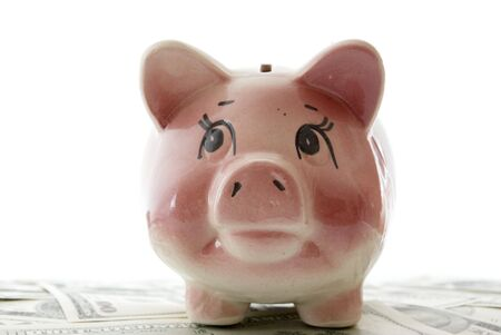 balanced budget: piggy bank on a  dollars