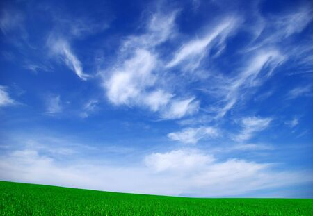 colorful cloudscape: field on a background of the blue sky