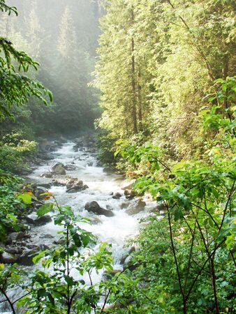 the rapids: river rapids on the hillsborough river                                                               Stock Photo