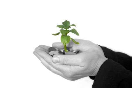 Hands holding sapling in soil Stock Photo - 3825440
